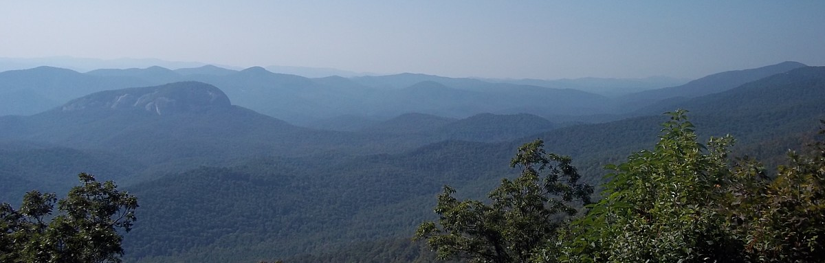 The Blue Ridge Mountains near the border of North Carolina and Tennessee—the native habitat of Fraser firs. Photo Credit: PJ Liesch, UW Insect Diagnostic Lab.